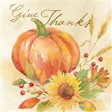 Welcome Fall - Give Thanks Art Print