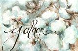 Cotton Bolls Gather Art Print