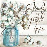 Cotton Boll Mason Jar I Family Art Print