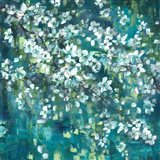 Teal Blossoms Square Art Print