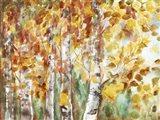 Watercolor Fall Aspens Art Print