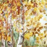 Watercolor Fall Aspens Square Art Print