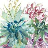 Succulent Garden Watercolor II Art Print