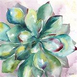 Succulent Watercolor I Art Print