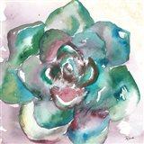 Succulent Watercolor IV Art Print
