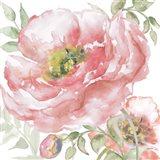 Poppy Romance I Art Print