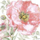 Poppy Romance II Art Print