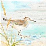 Sandpiper Beach I Art Print