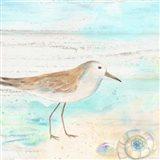 Sandpiper Beach III Art Print