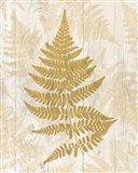 Golden Fern I Art Print