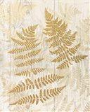 Golden Fern II Art Print