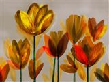 Contemporary Poppies Yellow Art Print