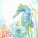 Sea Life Serenade III Art Print