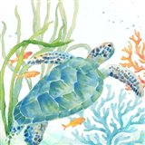 Sea Life Serenade IV Art Print