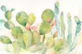 Cactus Garden Landscape Art Print