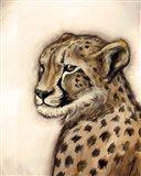 Cheetah Portrait Art Print