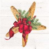 Christmas by the Sea Starfish square Art Print