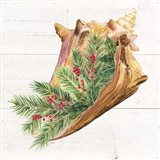 Christmas by the Sea Conch square Art Print