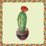 Rainbow Cactus I Art Print