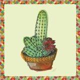 Rainbow Cactus III Art Print