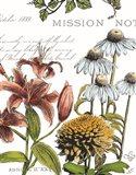 Botanical Postcard Color II Art Print