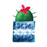 Colorful Cactus IV Art Print
