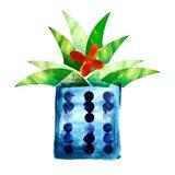Colorful Cactus VII Art Print
