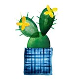 Colorful Cactus VIII Art Print