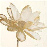 Vintage Lotus Cream I Art Print