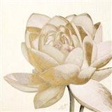 Vintage Lotus Cream II Art Print
