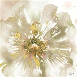 Neutral Watercolor Poppy Close Up I Art Print