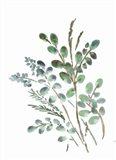 Farmhouse Botanicals II Art Print