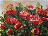 Red Poppies Garden Art Print