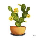 Cactus Flowers III Art Print