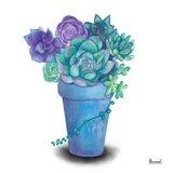 Turquoise Succulents IV Art Print