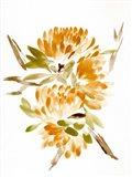 Farmhouse Florals VII Art Print