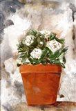 White Flower Clay Pot I Art Print