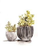 Gray Potted Plants Art Print