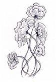Blossoming Gray I Art Print
