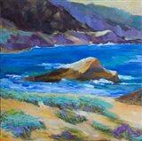 Carmel Cove Art Print