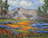 Carmel Spring Art Print