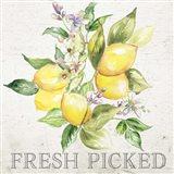 Lemon Grove III Art Print