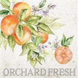 Lemon Grove IV Art Print