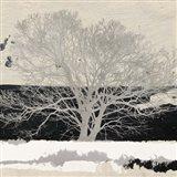 Silver Tree (detail) Art Print
