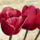 Red Tulips (Detail) Art Print