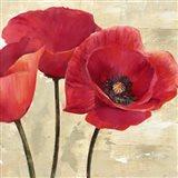 Red Poppies (Detail) Art Print