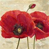 Red Poppies (detail II) Art Print