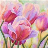 Tulips in Wonderland I Art Print