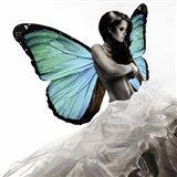 Winged Beauty #1 Art Print