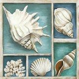 Collection of Memories III Art Print
